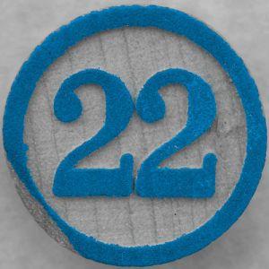 22 Rinto Susanto Medi